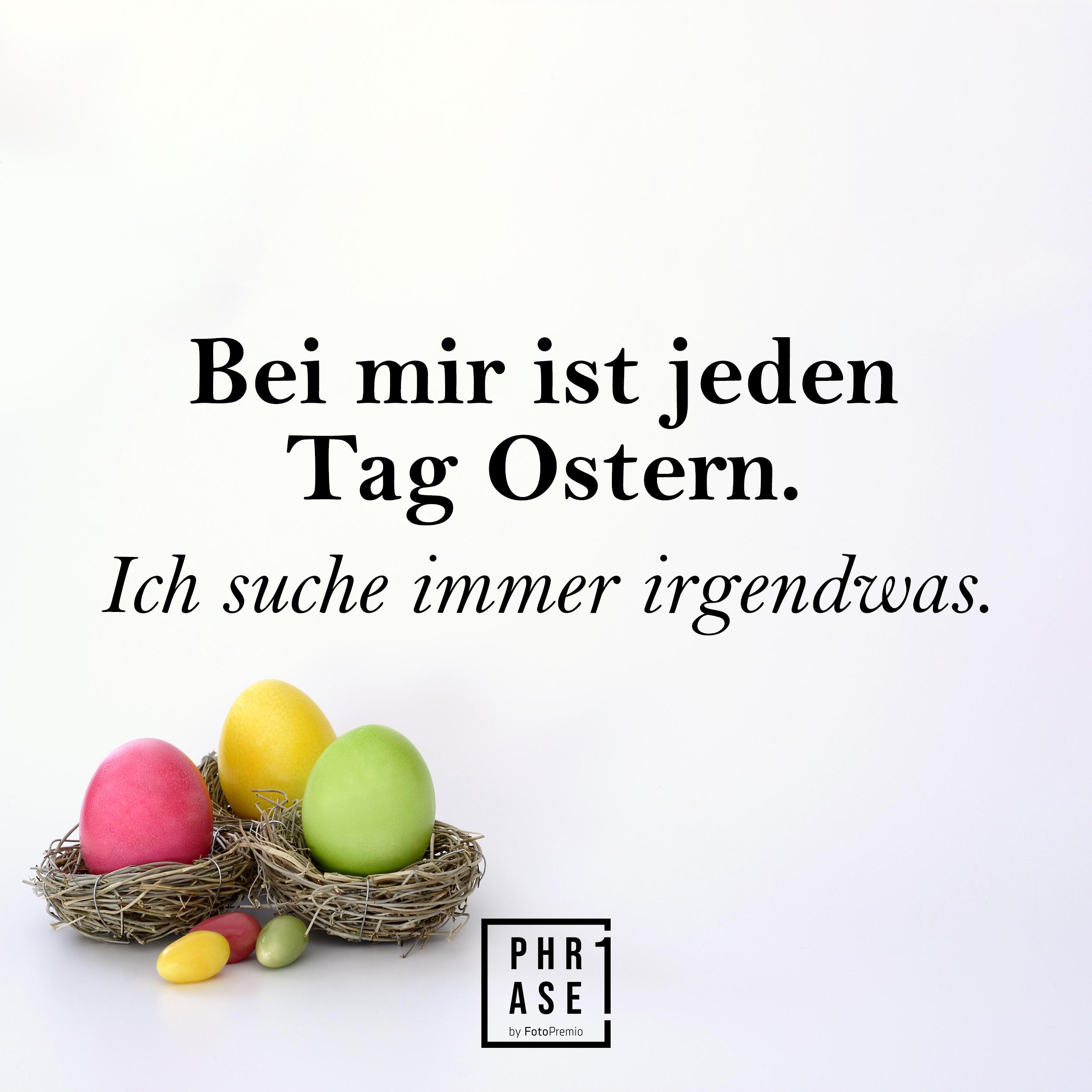 Bei mir ist jeden Tag Ostern Ich suche immer irgendwas