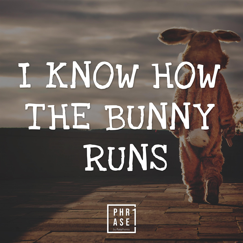 I know how the bunny runs