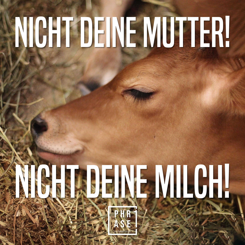 Nicht deine Mutter! Nicht deine Milch!