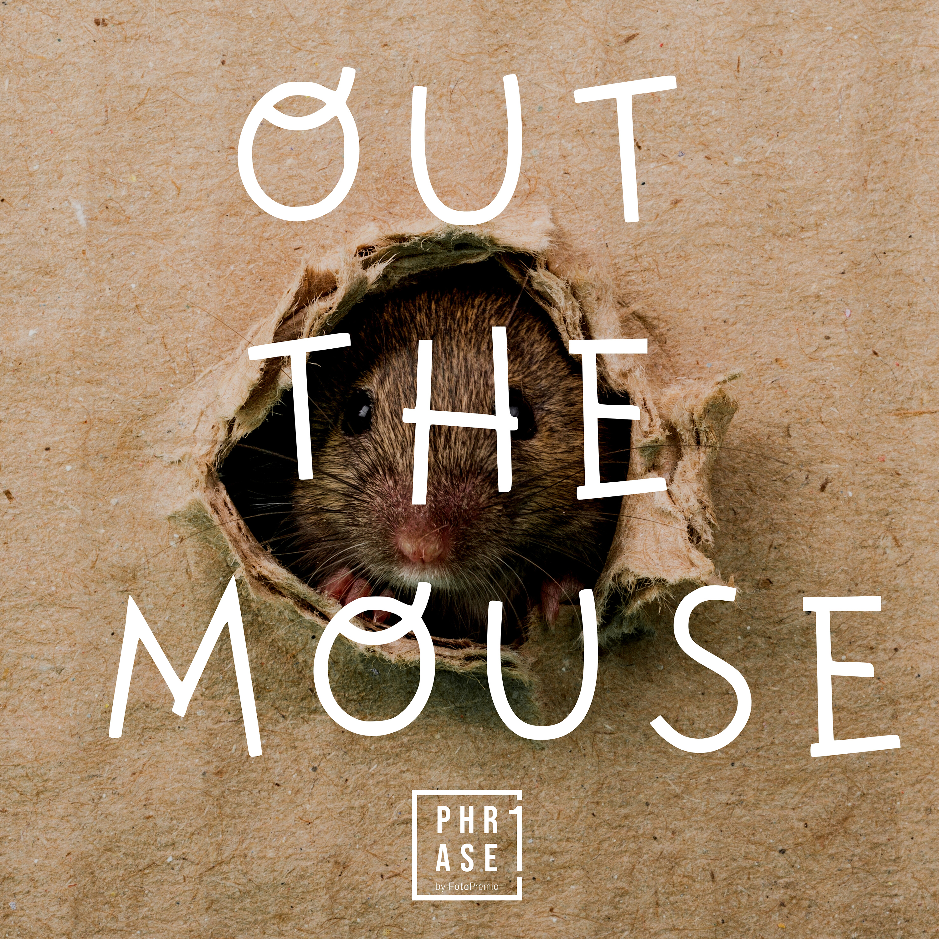 Out the mouse