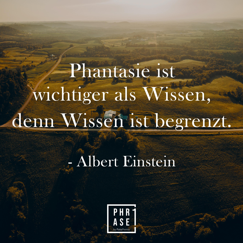 Phantasie ist wichtiger als Wissen, denn Wissen ist begrenzt - Albert Einstein