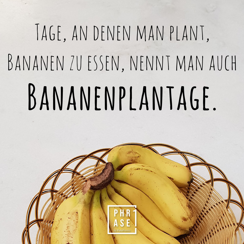 Tage, an denen man plant, Bananen zu essen, nennt man auch Bananenplantage.